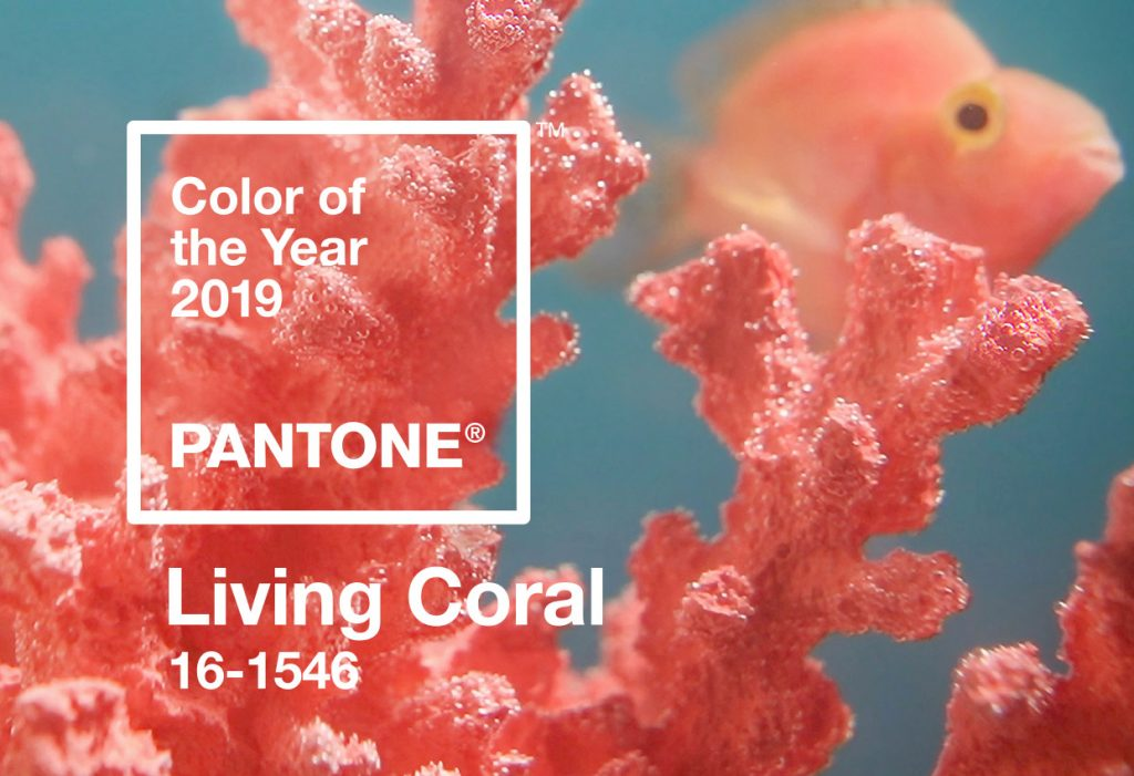 رنگ مرجانی روشن رنگ سال 2019